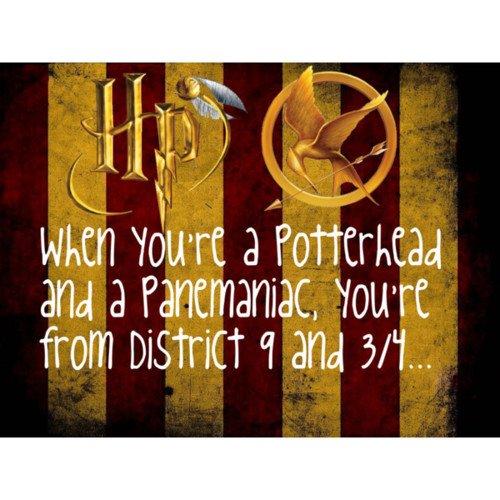 HP VS HG