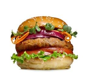 veggie-burger-main-main